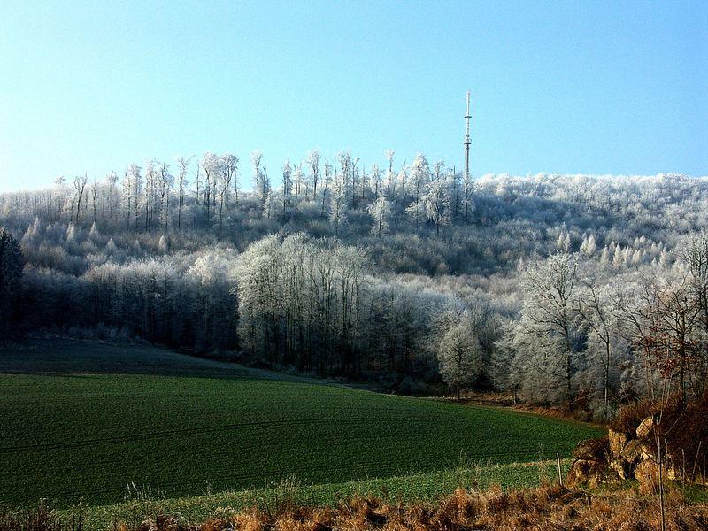 Der Winter hat viele Farben