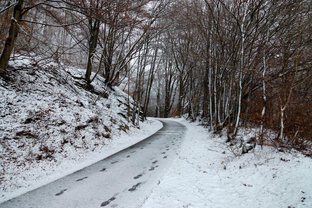 Der Winter hinterlässt seine Spuren...