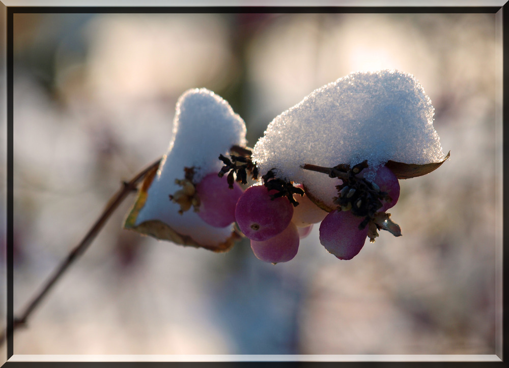 Der Winter hört nicht auf