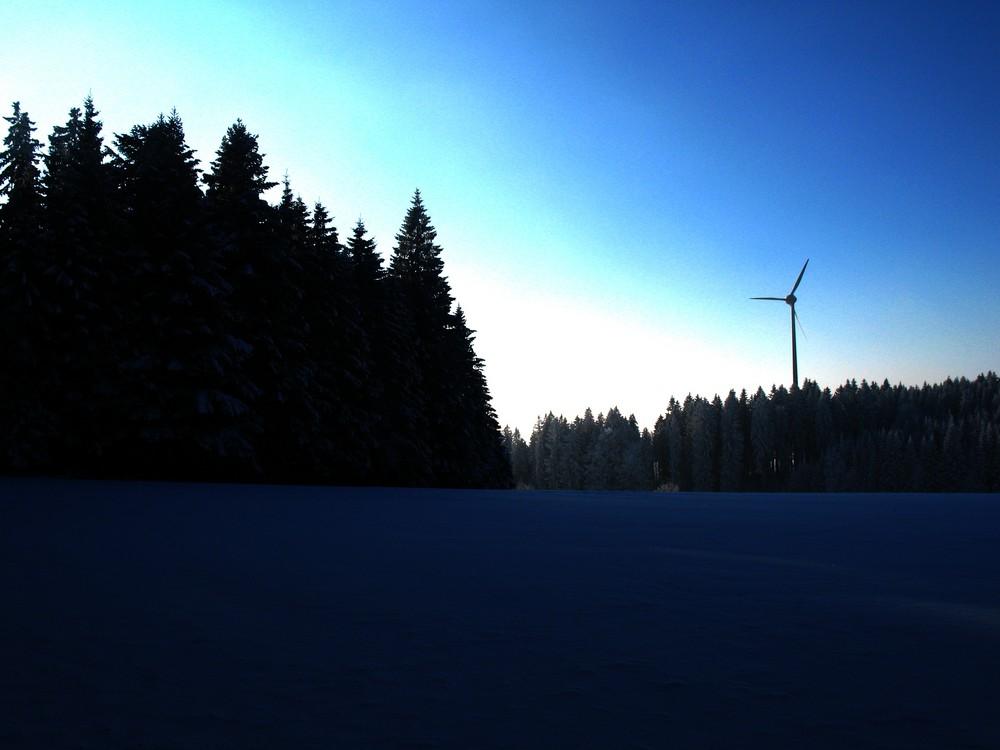Der Winter im Schwarzwald...