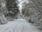 Der Winter in diesem Jahr war ein Sonntag.