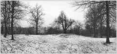 Der Winter ist da.... Park in Harvestehude