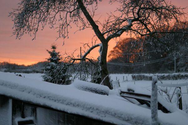 Der Winter ist da und schenkt uns direkt einen schönen Sonnenuntergang