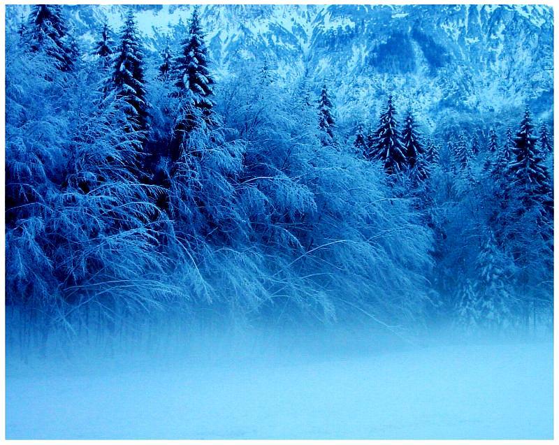 Der Winter ist eingezogen.