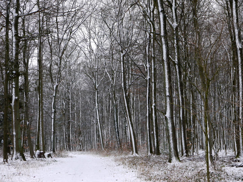 Der Winter ist zurück!