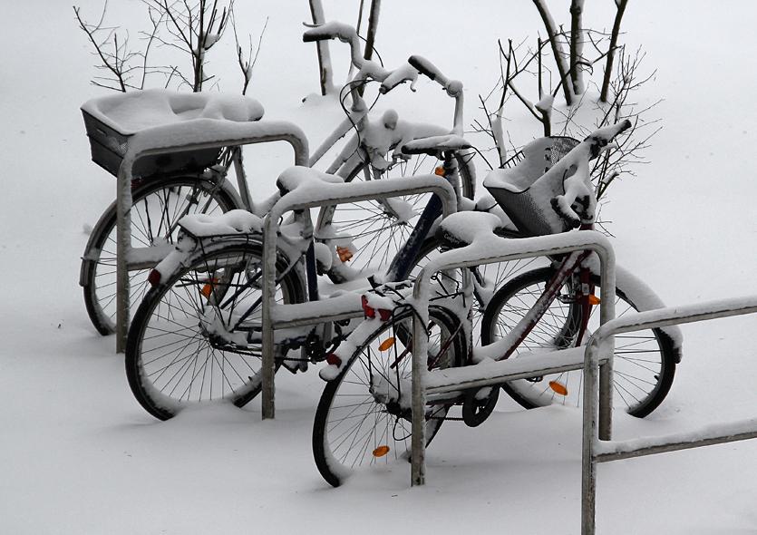 Der Winter ist zurückgekehrt II