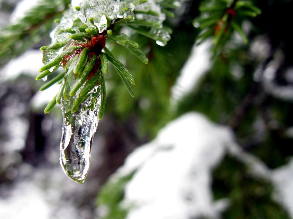 ... der Winter kam früher als erwartet