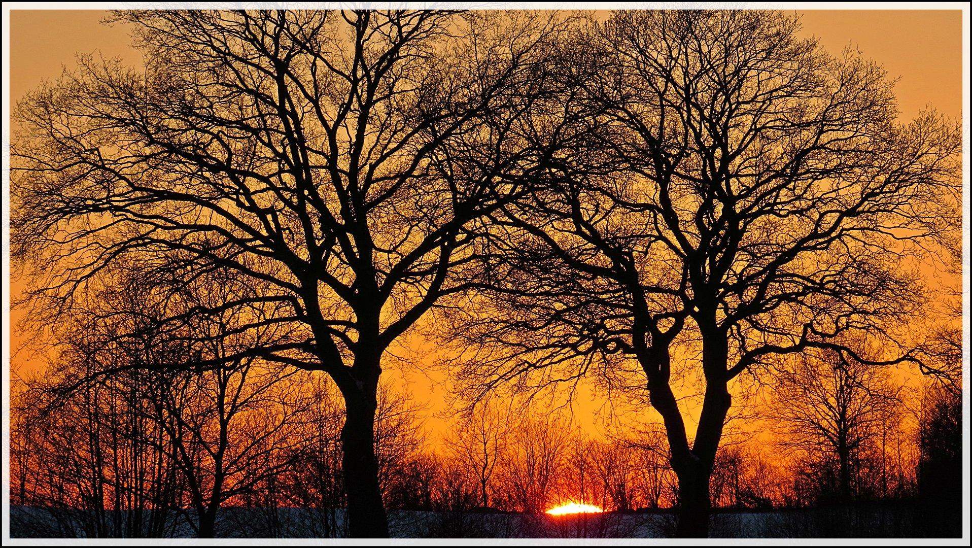 Der Winter kann sogar Mitte März schön sein