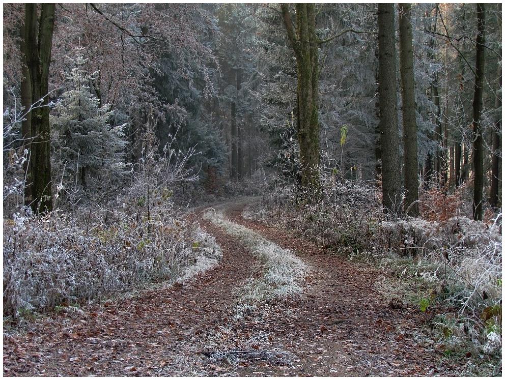 Der Winter lässt grüßen (3)