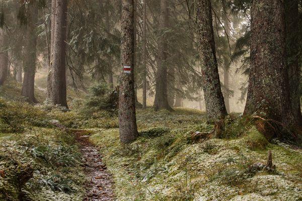 Der Winter steht vor der Tür