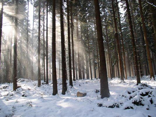 Der Winter will kein Ende nehmen