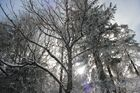Der Winter will nicht weichen