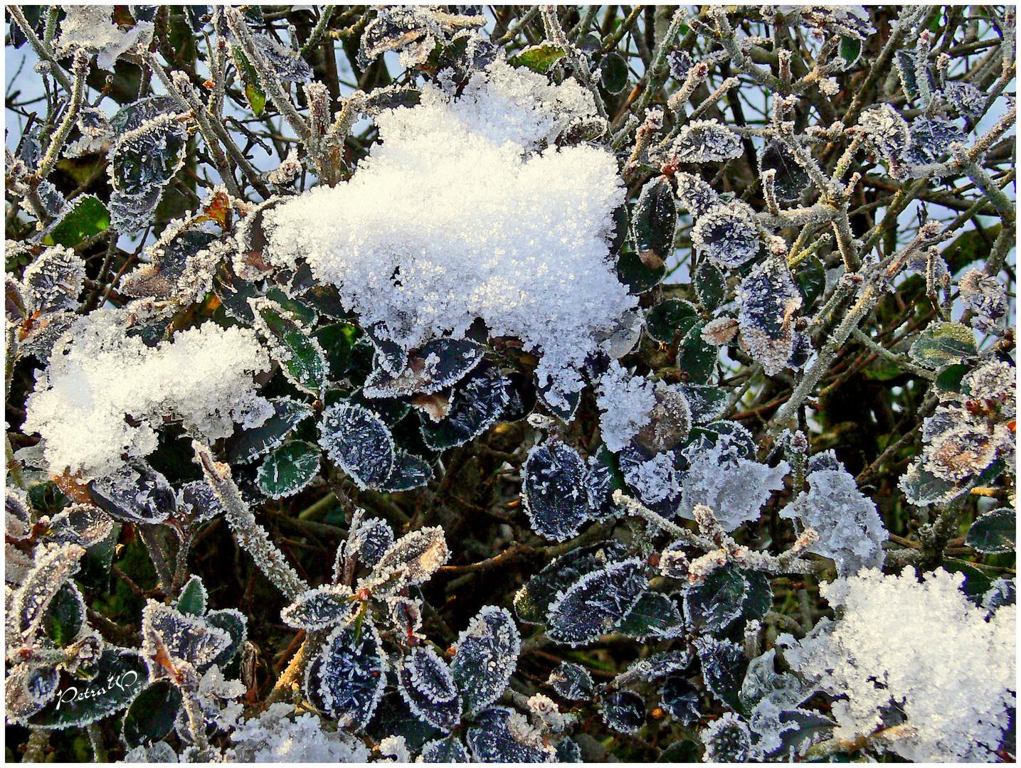 Der Winter will nicht weichen .....