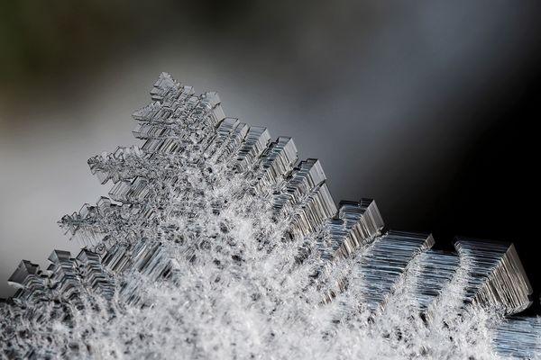 Der Winter zaubert kunstvolle Schmuckstücke hervor …  - L'hiver, un artiste extraordinaire!