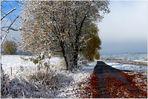 der Winter zu Besuch...(3)