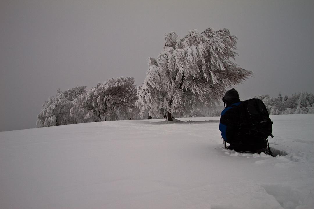 Der Winterfotograf...
