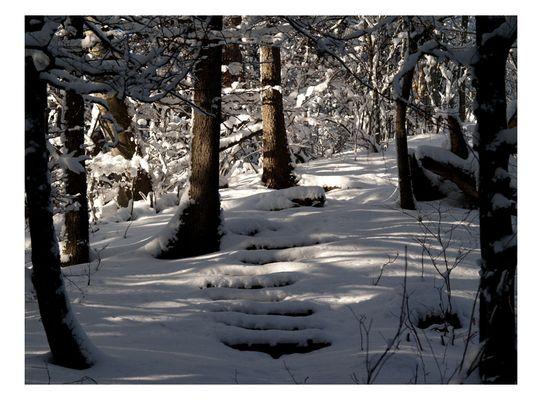 ~der Winterweg~