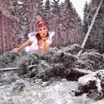 """Der Wunsch eines jeden Försters nach """"Kyrill"""" - eine Fee, die den Wald aufräumt....."""