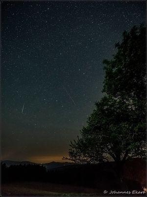 Der Zauber einer Sommernacht mit Sternschnuppen