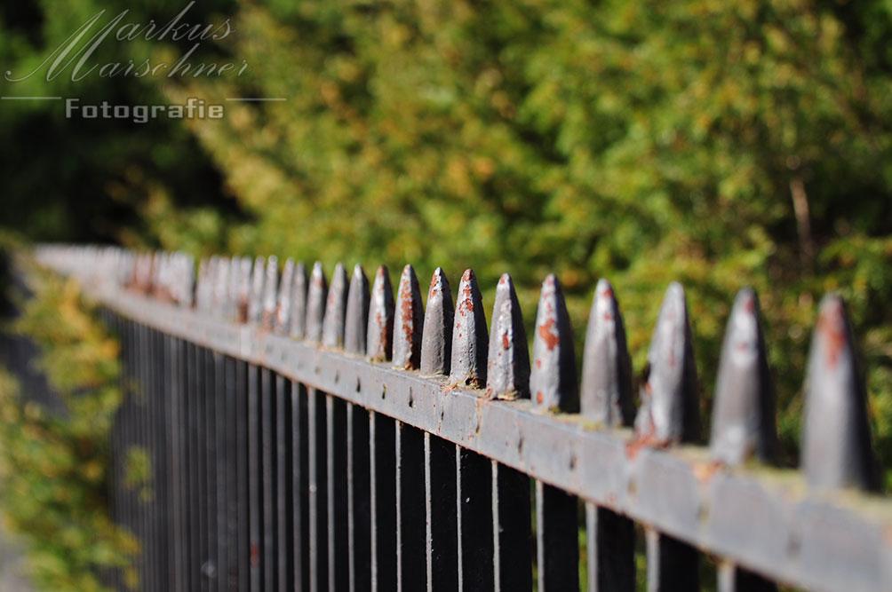 Der Zaun
