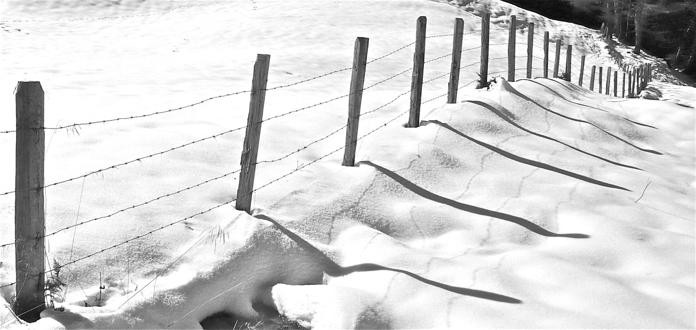 Der Zaun ist die Wahrheit - und sein Schatten ist das, was die Menschen aus ihr machen - . . .