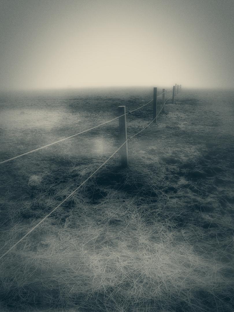 Der Zaun zwischen dem Nichts und dem Nichts