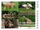 Der Zoo in Augsburg