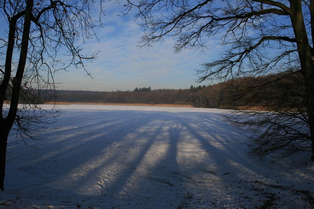 Der zugefrorene Brinkenweiher im Westerwald