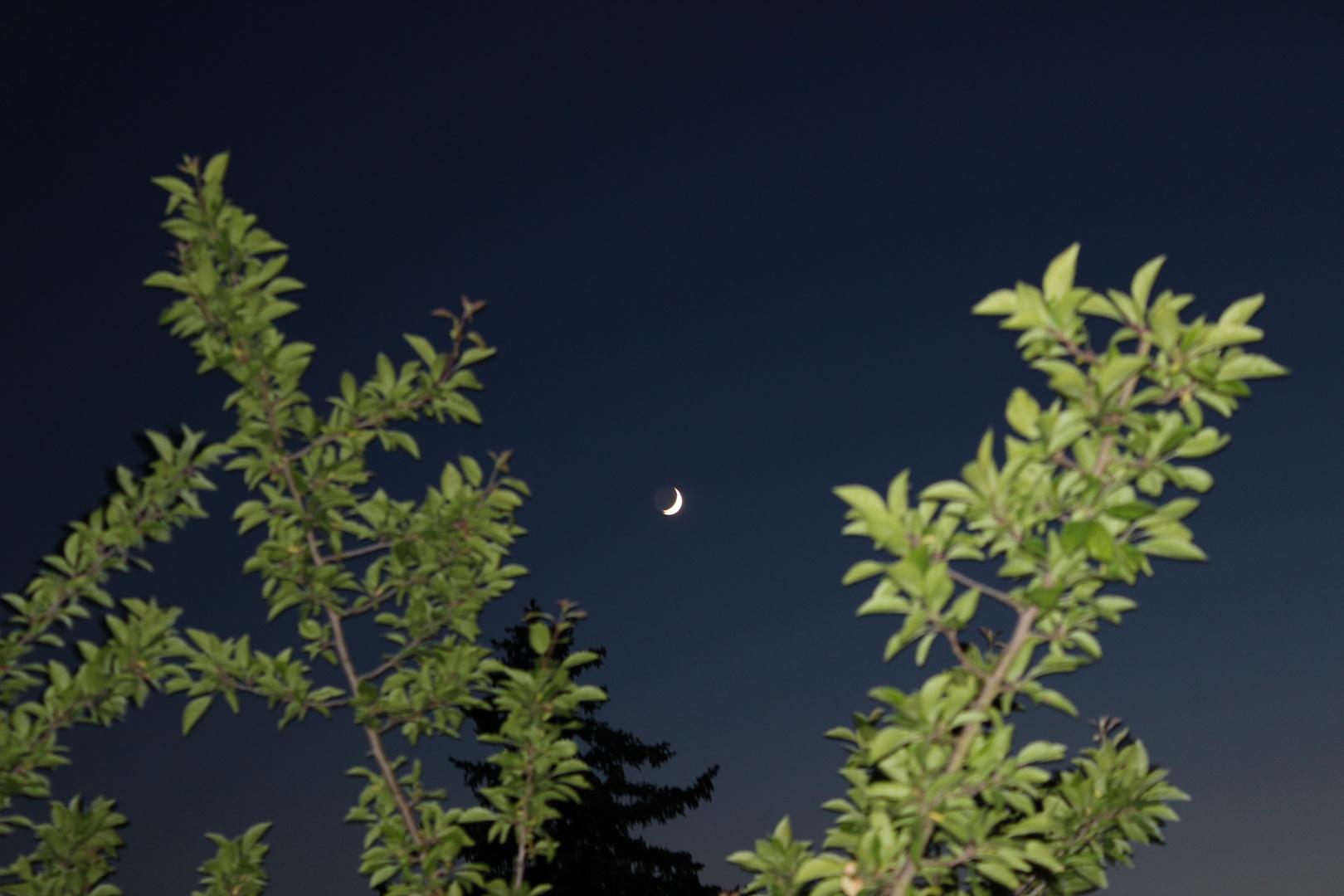 Der zunehmende Mond am Abendhimmel ...