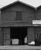 Dernier producteur indépendant qui produit du sel de Aveiro