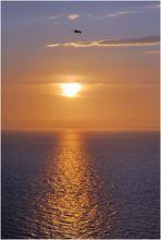 Derniers rayons sur la mer