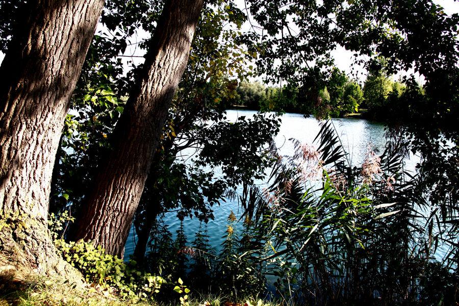 derniers rayons sur le lac!