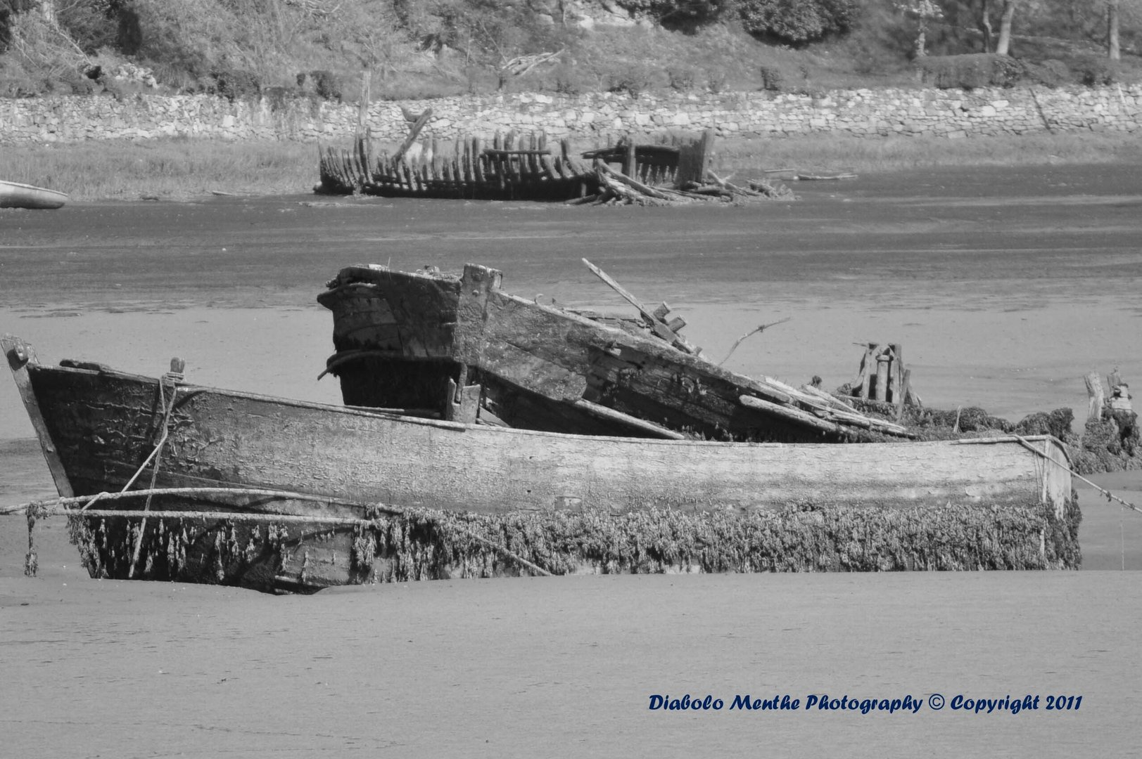des bateaux au repos