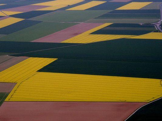 des champs , identhique à un tableau abstrait