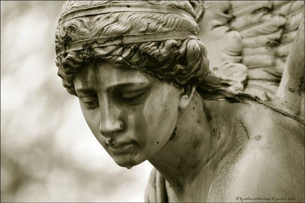 ... des engels träne ...