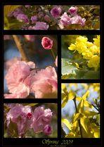 Des Frühlings Atem.....