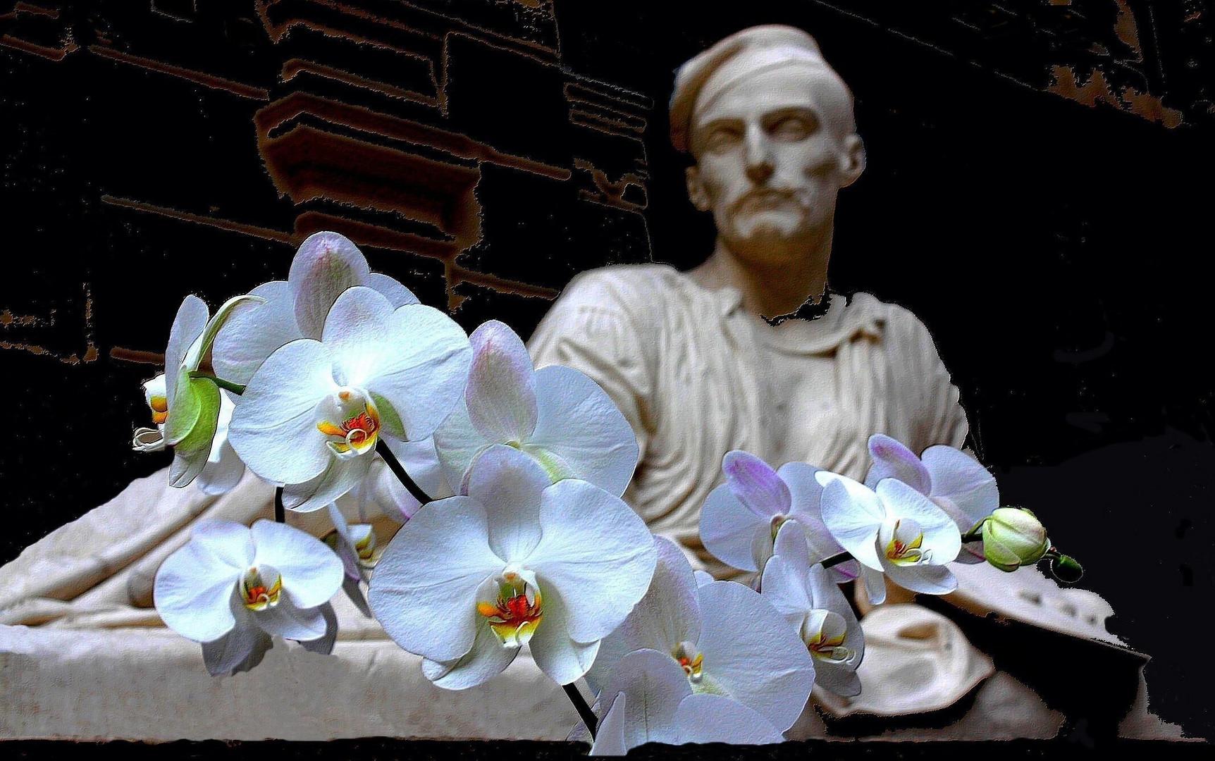 Des orchidées pour Géricault