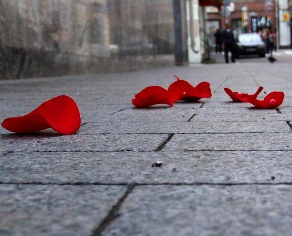 des petales sur le trottoir
