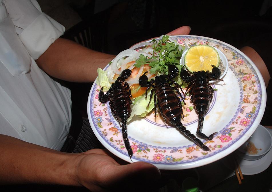 Des scorpions dans mon assiette