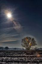 Des vollen Mondes magisch' Licht