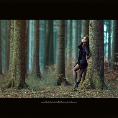 ...des Waldes