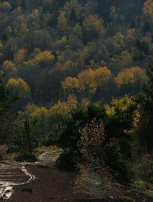 Descente du Puy de la vache