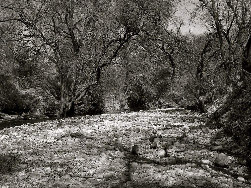 desde el rio