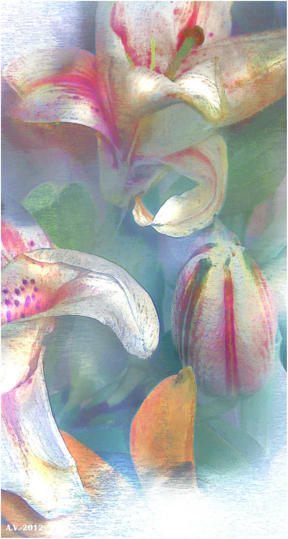 Desde la tierra, la flor volar quería.....(Lilium 5)