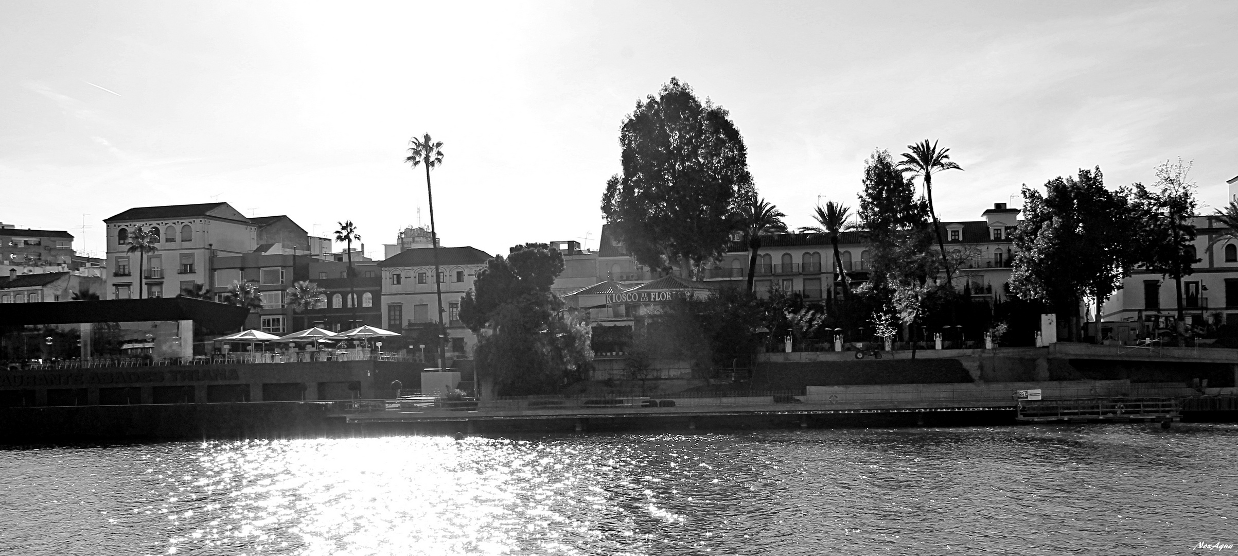 Desde Sevilla