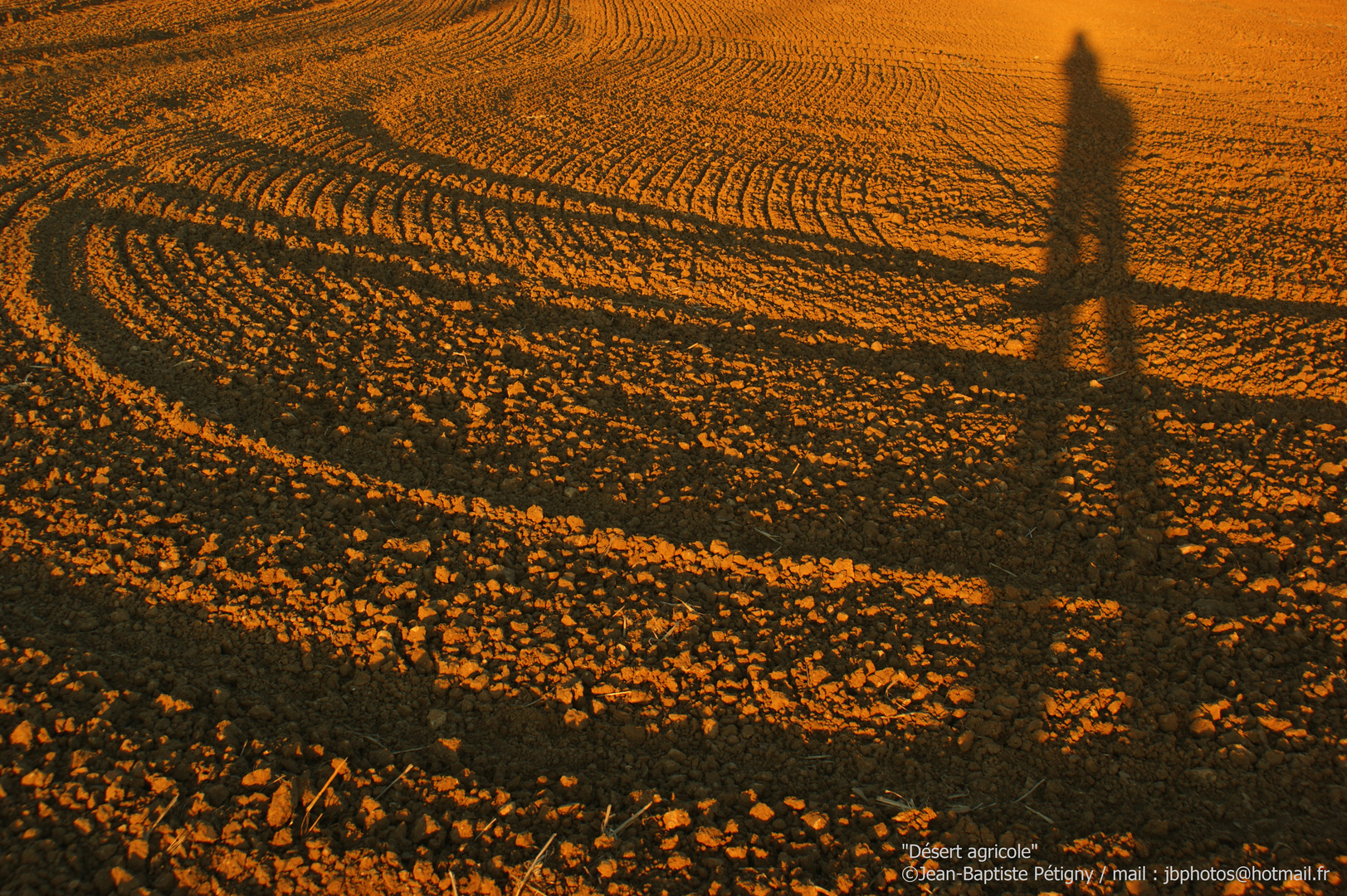 Désert agricole