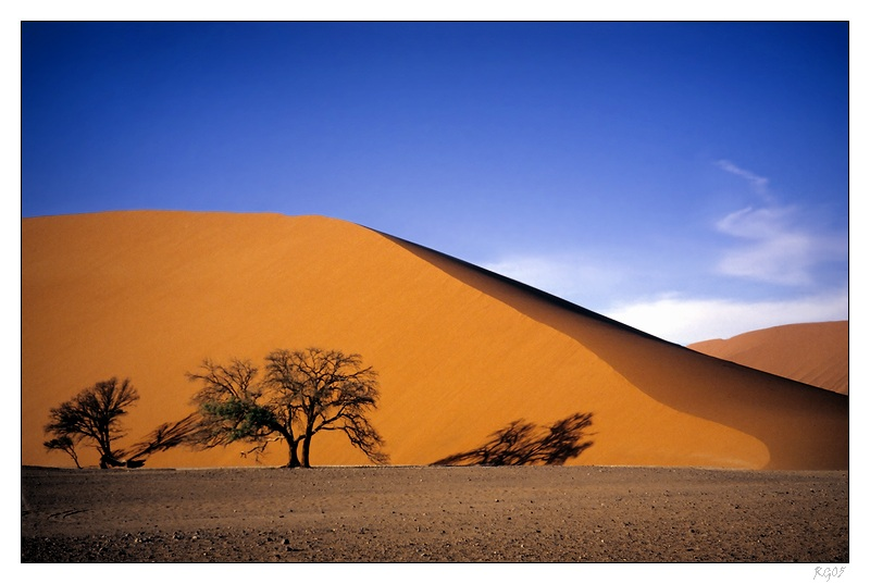 """""""Desert Colours"""""""