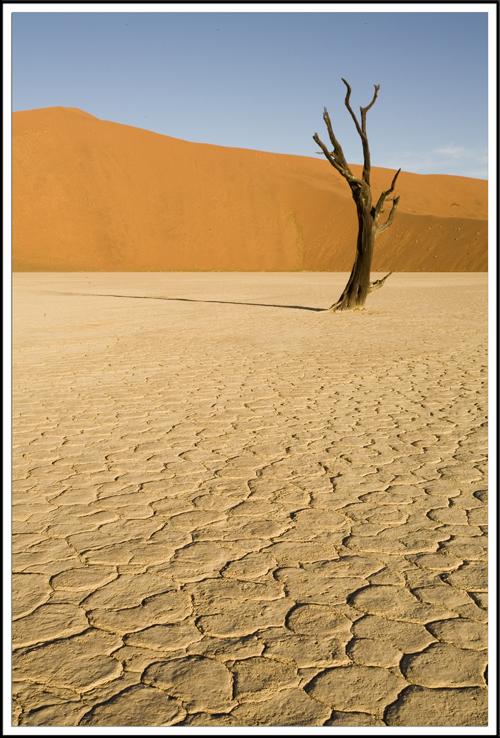 Desert du Namib, Deadvlei