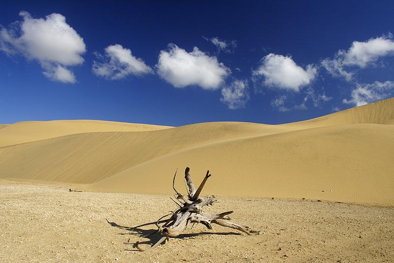 Desert in Venezuela