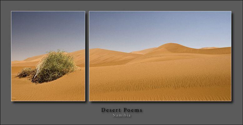 Desert Poems